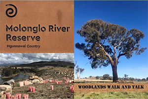Molonglo Valley River Reserve