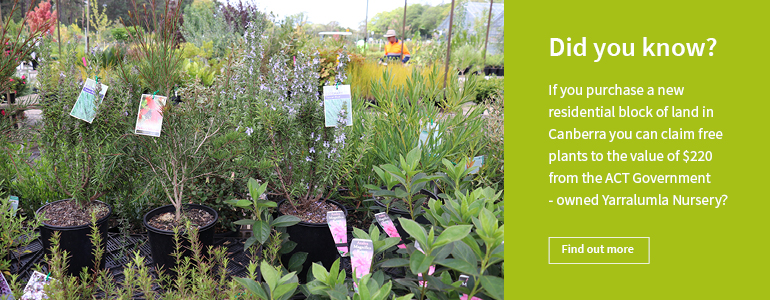 Purchase offer Yarralumla Nursery ACT