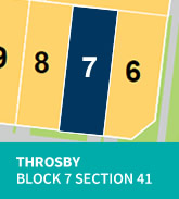 Throsby Block 7 Section 41
