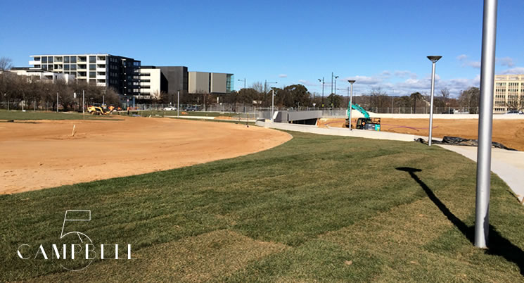 Campbell 5 - Park Updates