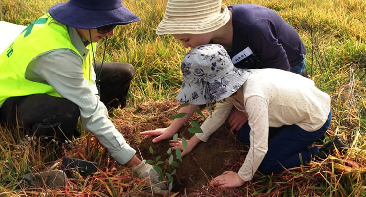 Barrer Hill Tree Planting - Sunday 18 May 2014