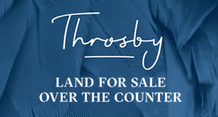 Throsby Land for Sale Over the Counter